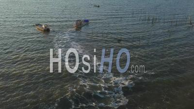 Vue Aérienne, Village Du Cap Ferret, Village De Herbe (élevage D'huîtres), Bassin D'arcachon, Vue Aérienne - Vidéo Drone