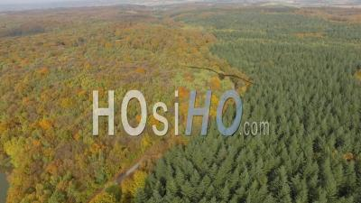 Forest Landscape In Isere, France, Aerial Video Drone Footage