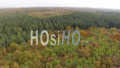Forest In Autumn In Isere, France – Aerial View By Drone