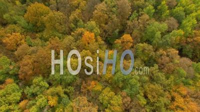 Forest And Ponds In Isere, France – Aerial View By Drone