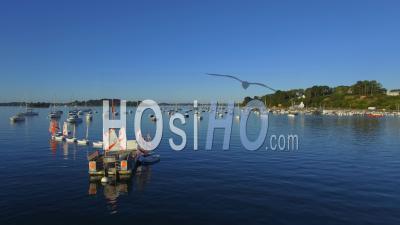 The Harbor Of Arradon In The Golfe Du Morbihan - Vidéo Drone