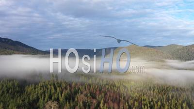 Rayons Du Soleil Qui Brille à Travers Les Nuages - Vidéo Drone