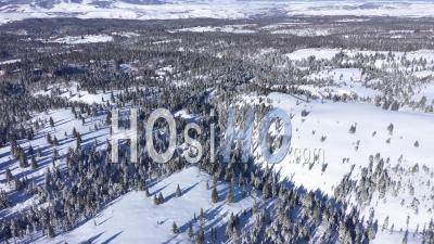 Voler Au-Dessus Des Montagnes Couvertes De Neige Et De La Forêt - Vidéo Drone