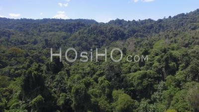 Réserve Faunique Nationale De Gandoca Manzanillo Costa Rica - Vidéo Drone