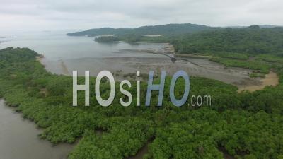 Îles De La Jungle D'isla Del Rey Panama - Vidéo Drone