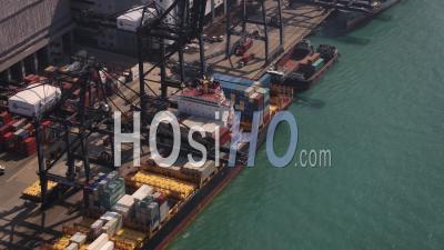 Vue Rapprochée Des Oiseaux De Hong Kong Volant Bas Le Long Des Gros Cargos Se Chargeant Du Chargement - Vidéo Drone