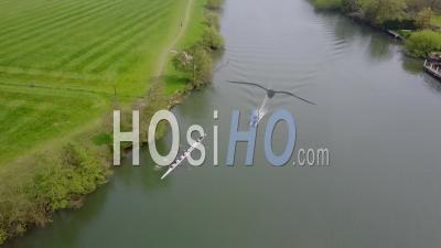 Huit équipes D'aviron De La Rivière Thames Au Royaume-Uni - Vidéo Drone