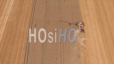 Wheat Fields In France, Video Drone Footage