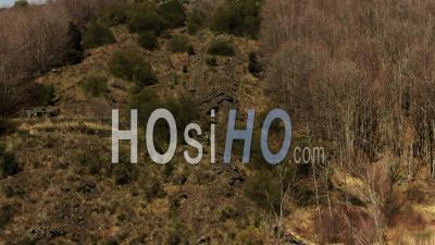 Vue Aérienne Ascendante Sur Le Rocher De Lave, Les Arbres Et Les Arbustes Révélant Le Mont Etna En Sicile - Vidéo Drone