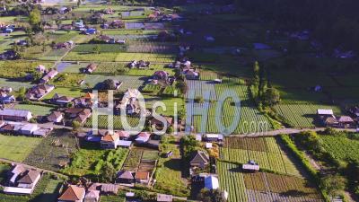 Patchwork De Terres Agricoles Au Pied Du Mont Batur - Vidéo Drone
