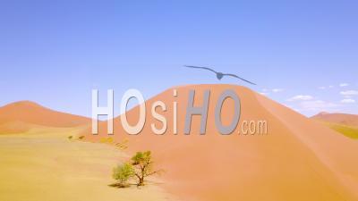 Vue Aérienne Sur Le Paysage Désertique Accidenté Et Les Dunes De Sable Près De Dune 45 En Namibie, Afrique - Vidéo Drone