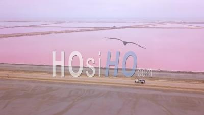 Aerial View Over A 4wd Safari Vehicle Driving On A Colorful Pink Salt Flat Region In Namibia, Africa - Video Drone Footage
