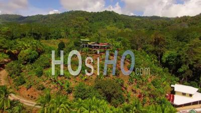Vue Aérienne D'un Petit Restaurant Ou D'un Bar à Costa Rica Jungle To Coastline - Vidéo Drone