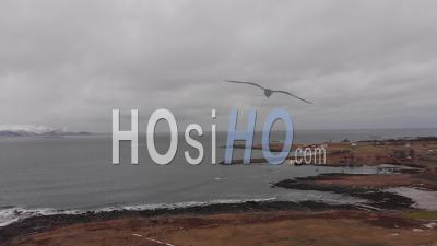 Isolated Village By The Arctic Ocean - Lofoten Islands - Video Drone Footage