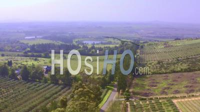 Vignobles Cultivés à Stellenbosch - Vidéo Drone