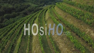 Aerial View Winery Of Etienne Brana Vineyard, Aoc Irouleguy, Saint-Jean-Pied-De-Port, France - Video Drone Footage