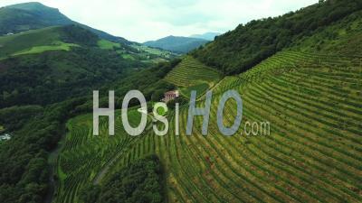 Aerial View Winery Of Etienne Brana Vineyard, Aoc Irouleguy, Saint-Jean-Pied-De-Port France - Video Drone Footage