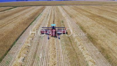 Combine Harvester In Wheat Field, Cape Town, South Africa - Video Drone Footage