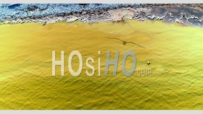 Algues Bleues Ou Vertes De Cyanobactéries Visibles En Surface Sur La Mer Baltique - Vidéo Drone