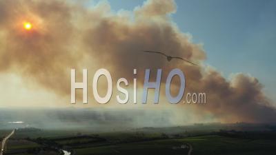 Immense Incendie De Forêt Dans Le Sud De La France - Vidéo Drone