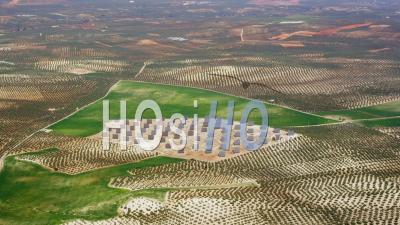 Vue Aérienne D'une Installation Photovoltaïque (plan Large) Entourée D'oliveraies