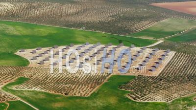 Aerial View Of (wide Shot) Rice Fields On The Guadalquivir Plains Between Seville And Jerez