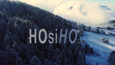 Forest Under Snow, Savoy, France, Drone Point Of View.