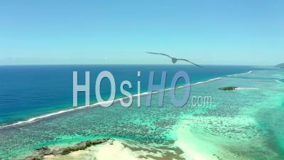 Lagune De Moorea ,, Polynésie Française, Vidéo Drone, Océan Pacifique, France