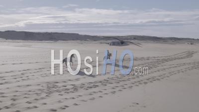 Femme à Cheval Avec Ses Deux Chevaux Sur Une Plage Au Bord De L'océan - Vidéo Aérienne Par Drone