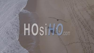 Shades Of A Horse Rider Passing By The Water With Her Two Horses - Aerial Video By Drone
