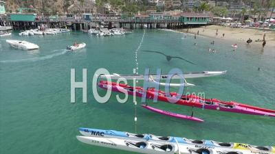 Outrigger Canoes - Drone Point Of View