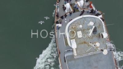 Seagulls Hovering Above A Cruise Boat - Drone Point Of View