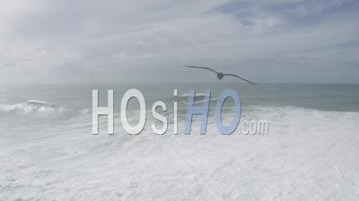 Big Wave In Praia Do Norte Nazare - Video Drone Footage