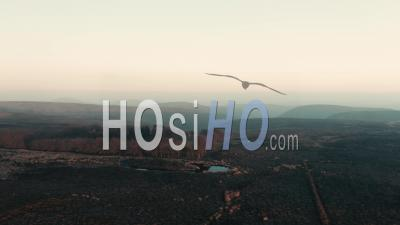 Scenic Moorland In Hazy Sunset Light - Video Drone Footage