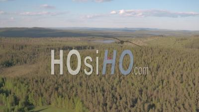 Aerial View Of A Helicopter Flying Above A Fir Trees Forest, Tackasen, Sweden - Video Drone Footage