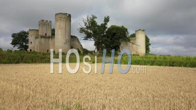 Castle In Vineyards And Wheat Fields, Video Drone Footage