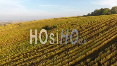 Vignobles D'hunawihr - Vidéo Drone