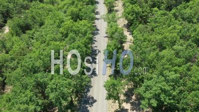 Countryside Road In The Middle Of A Forest, Nearby Valensole, Provence, France - Video Drone Footage
