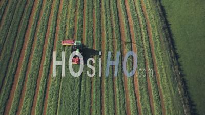 Récolte Des Cultures Dans Une Ferme Avec Un Tracteur. Prise De Vue Drone