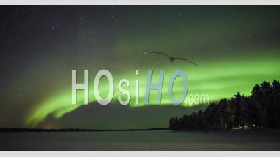 Northern Lights Timelapse Of Bright Green Aurora Borealis In The Night Sky, With Stars. Time Lapse Over Remote Landscape Of Frozen Lake And Forest In Lapland, Finland