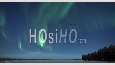 Aurora Borealis Time Lapse Of Northern Lights Sur Paysage De Lac Gelé Pendant La Nuit. Timelapse En Laponie, Finlande