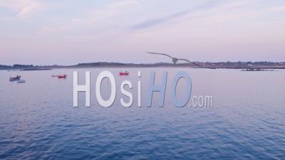 Bateaux De Pêche à Guernesey, Channel Islands, Royaume-Uni. Prise De Vue Drone