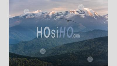 Carpathian Mountains At Ranca At Sunrise, Parang Mountains, Oltenia Region, Romania, Background With Copy Space
