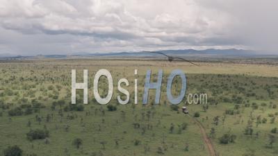 Vacances De La Faune, Conduite à Travers Une Réserve De Gibier à Laikipia, Kenya. Vidéo Aérienne Par Drone Du Paysage De Savane Africaine