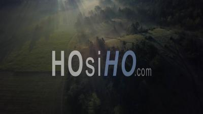 Caille Andon Alpes-Maritimes France Fog Mountain Forest Sunrise - Video Drone Footage