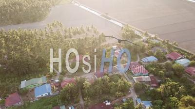 Aerial Evening Malays Village With Coconut - Video Drone Footage