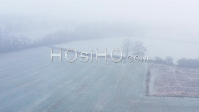 Aerial Drone Video Of Countryside And Fields In Misty Foggy Weather Conditions, Rural English Scene With Bare Winter Trees In Mist And Fog In A Bleak Cotswolds Hills Scene, Gloucestershire, England, United Kingdom