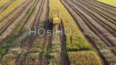 Fly Follow Combined Harvester - Video Drone Footage