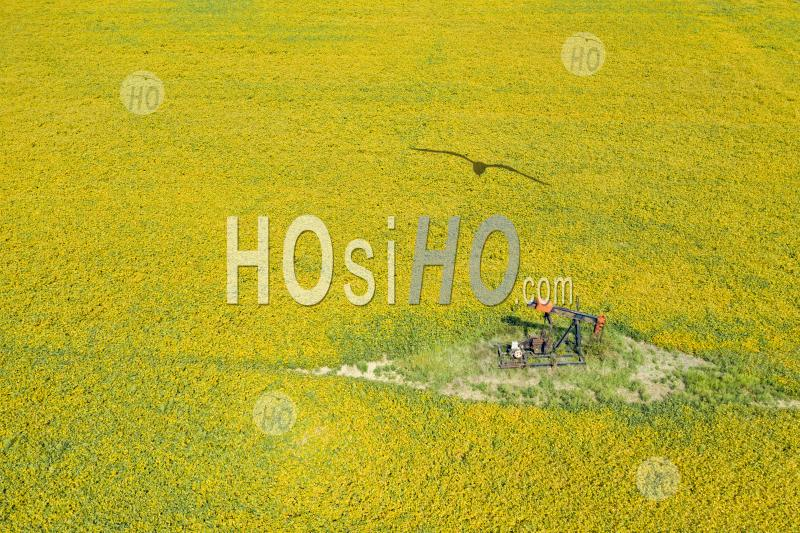 HOsiHO's Newest Aerial Stock Images  & Timelapses gallery
