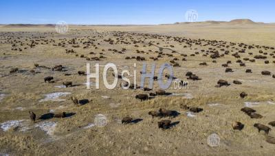 Bison Ranch - Aerial Photography